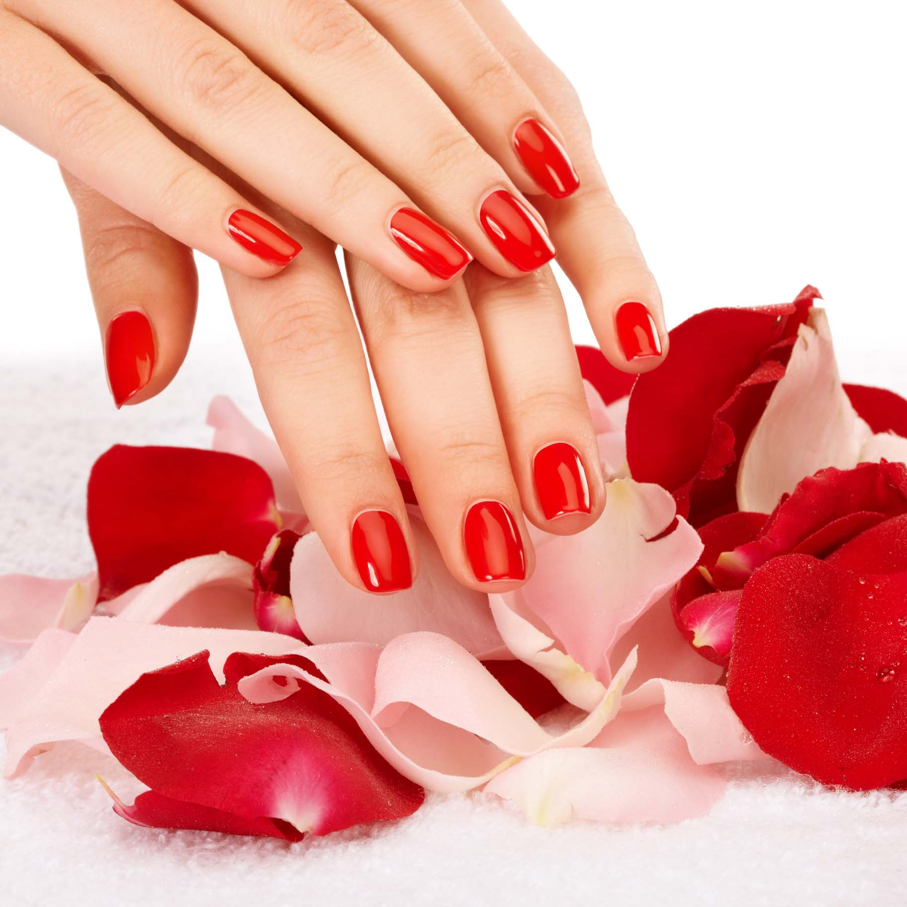 Gel Color (Call for price)
